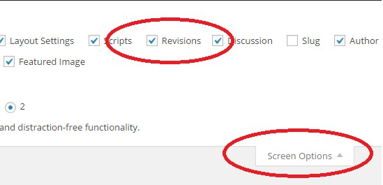 disable-or-restrict-wordpress-revisions-01