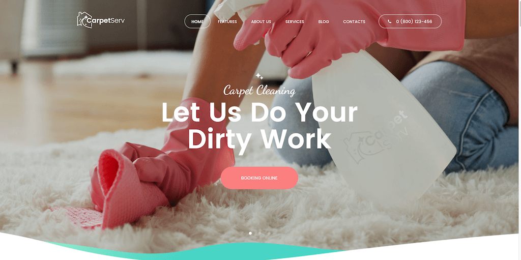 Cleaning Companies Websites